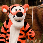 What is a database Tigger?